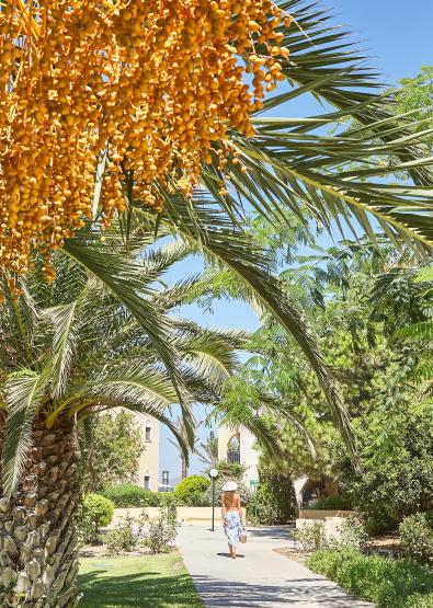 casa-cabana-accommodation-in-casa-paradiso-hotel-kos-island