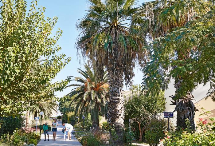 02-grecoland-kids-programme-costa-botanica-family-resort